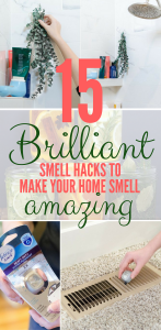 15 Tricks to making your house smell like a million bucks!